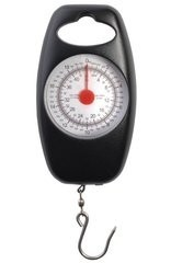 Reuben Heaton Microweigh Scale