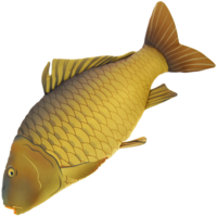NGT Common Carp Pillow / Soft Toy 70cm